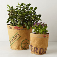 Reclaimed Tea Sack Planter