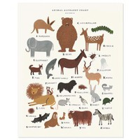 Animal Alphabet Print | Folly Home | Design-led Gifts, Home wares, Vintage Finds