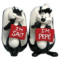 Looney Tunes Pepe Le Pew and Penelope Salt and Pepper Shakers Set