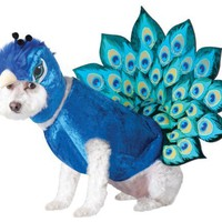 Animal Planet Peacock Dog Costume, Medium, Multicolor:Amazon:Pet Supplies