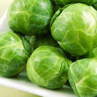 Heirloom, Long Island Improved Brussel Sprouts, A Garden Favorite, 25 Seeds, Cheapseeds