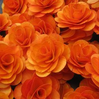 160 Pcs- Birch Wood Shavings Crafted Flowers - Wood Roses - Orange | AccentsandPetals - Wedding on ArtFire