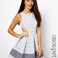 ASOS Petite | ASOS PETITE Exclusive Skater Dress in Broderie Anglaise at ASOS