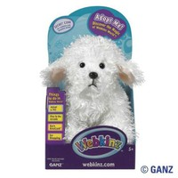 Webkinz Bichon Frise in Box