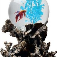 Aquarius OT1001 Betta Treasures 1-Gallon Coral Aquarium:Amazon:Pet Supplies