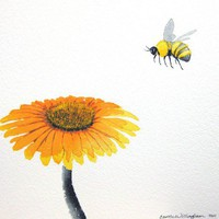 Bee and Flower 10x11 inch Original Watercolor by paintedbliss
