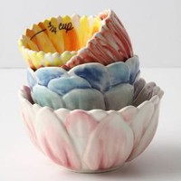 Florist Measuring Cups-Anthropologie.com