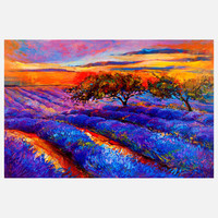 Ivailo Nikolov: Lavender Night, at 16% off!