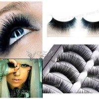 Cheeky Makeup 10 Pairs Fake / False Eyelashes 10 Pairs Set:Amazon:Beauty