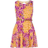 purple floral print lace skater dress - skater dresses - dresses - women - River Island