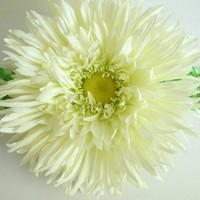 XLarge White Gerber Daisy Clip Great for by thepinkgiraffeshop