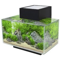 Amazon.com: Fluval Edge, 6 gallon Aquarium with 21-LED Light, Black: Pet Supplies