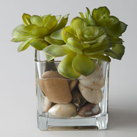 John-Richard Collection Rocky Succulents Faux Greenery