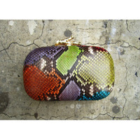 Multi Snakeskin Box Clutch