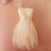 A 083124 u Embroidery lace tutu dress