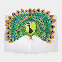 Pop-Up Peacock Note Cards                                                                                                        | MoMA