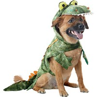 Petco Alligator Halloween Dog Costume
