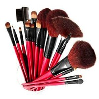 Shany Professional Cosmetic Brush Set with Pouch (Color May Vary), 13 pc.: Beauty