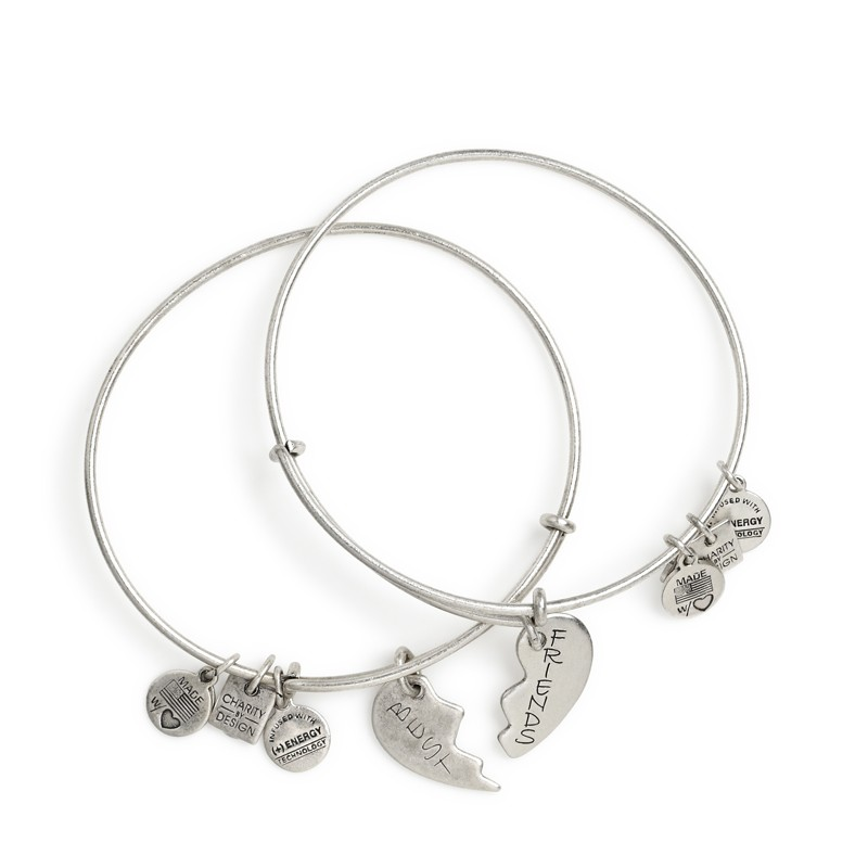 best friends set of 2 charm bracelets from alex and ani