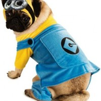 Rubies Costume Printed Pet Costume, Medium, Despicable Me Minion:Amazon:Pet Supplies