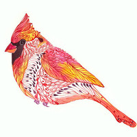 Cardinal bird // SALE 3 for 2 // Jewel Cardinal art print, size 10x8 (No. 2)