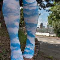 Sock Dreams » Socks » Knee Highs » Cloudy Sky Printed Knee Highs
