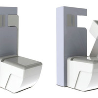 2-in-1 Toilet: Seat and Lid plus Flip-Down Standing Urinal