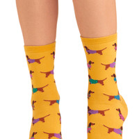 Gold Medal Wiener Dog Socks | Mod Retro Vintage Socks | ModCloth.com