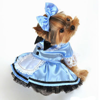 Fantasy Alice in Wonderland Halloween Dog Costume at BaxterBoo