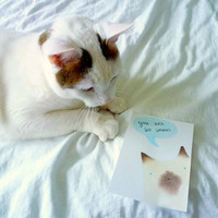 Custom Cat Card, Personalised Compliment Cat Card, Encouraging Card, Make Your Own Card, Custom Pet Portrait