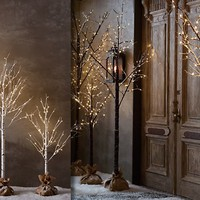 Winter Wonderland Trees | Restoration Hardware