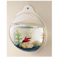 Wall Mounted Acrylic Fish Bowl