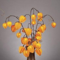 Gerson 36854 31-Inch Chinese Lantern with 30 Clear Rice Lights, Orange