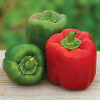 Sweet, Candy Apple Hybrid Pepper Seeds - Vegetable Seeds and Plants at Burpee.com