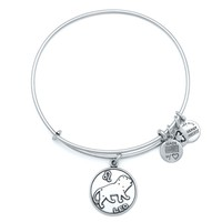 Leo Charm Bracelet | Alex and Ani