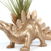Dinosaur planter, Gold Office Home Desk Decor, with air plant