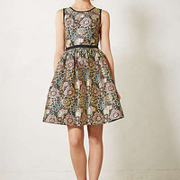 Starshine Brocade Dress