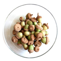 Edible Chocolate Cocoa Bean Candy Acorns 10 - Featured in Martha Stewart Weddings Fall 201