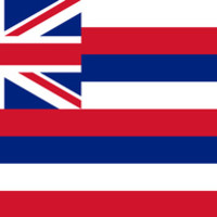 The State flag of Hawaii - Authentic version Stretched Canvas by LonestarDesigns2020 - Flags Designs +