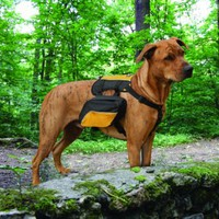 Kurgo Wander Dog Pack