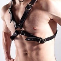 Heavy Duty Leather X Harness