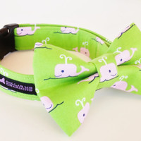 Dog Collar Bow Tie Set Beluga