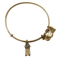 Team USA Sled Charm Bangle | Alex and Ani