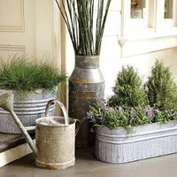 Found Watering Can | Pottery Barn