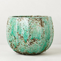 Celadon Garden Pot by Anthropologie Green