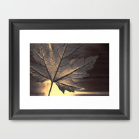 canadian maple leaf Framed Art Print by Steffi by findsFUNDSTUECKE