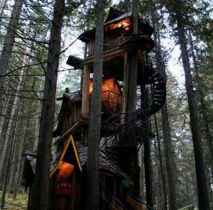Fantasy Forest Tree House Straight out of a Kids Story Book | Designs & Ideas on Dornob