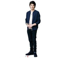 One Direction UYT Zayn Malik Cardboard Cutout - Lifesize standups - Best Price