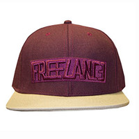 """The Standard"" Snapback in Fleetwood"