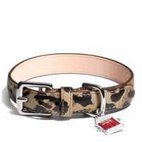 MADISON OCELOT COLLAR